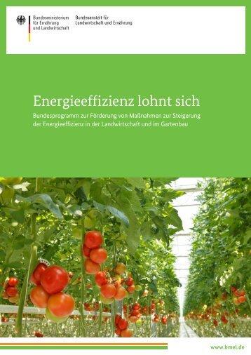 Energieeffizienz lohnt sich