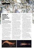 Seafood - Page 6