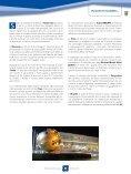 AZIENDE E KNOW-HOW ITALIANO NEL RILANCIO DEL PIANO JOKOWI - Page 2