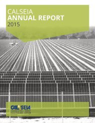 CALSEIA ANNUAL REPORT