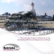 Broschüre  Winterdienst Bad Homburg v.d.Höhe