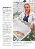 Seafood - Page 7