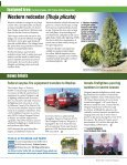 Forests - Page 3