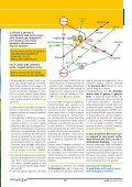 COLFERTwindow 20 - dicembre 2014 - Page 7