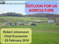 OUTLOOK FOR US AGRICULTURE