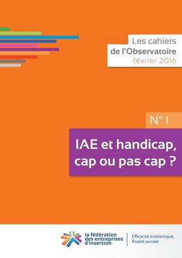IAE et handicap cap ou pas cap ?