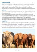 Southern Bull Sale - Page 6