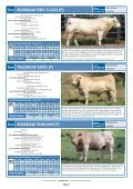 Southern Bull Sale - Page 7
