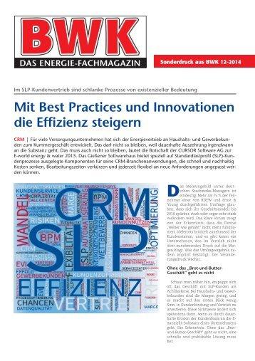 Mit Best Practices und Innovationen die Effizienz steigern, BWK 12-2014