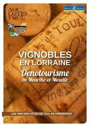 VIGNOBLES Oenotourisme