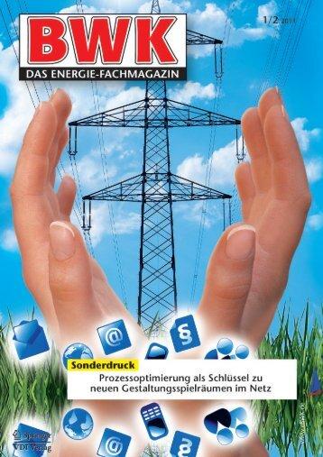 AVU Netz GmbH, Prozessoptimierung, Referenzbericht, BWK 1/2-2011