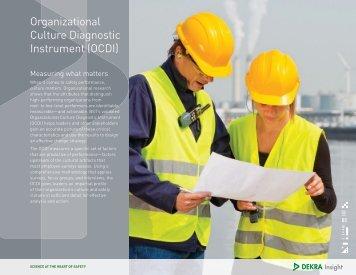 Organizational Culture Diagnostic Instrument (OCDI)