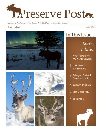 Preserve Post - Spring Edition - YWP 2016