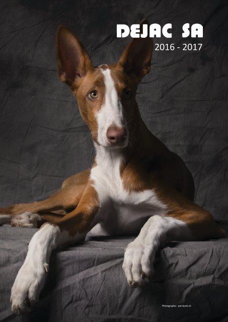 Lot de 100/Simplex mousqueton universel 40/mm//mousqueton//Bracelet en cuir Crochets//Laisse pour chien