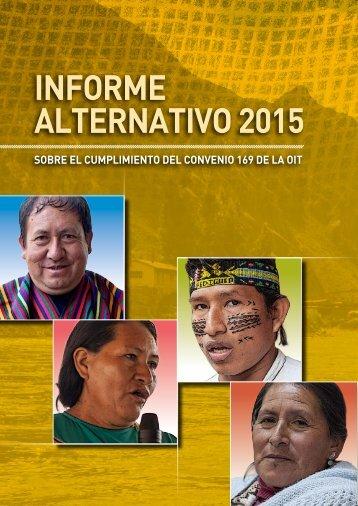 INFORME ALTERNATIVO 2015