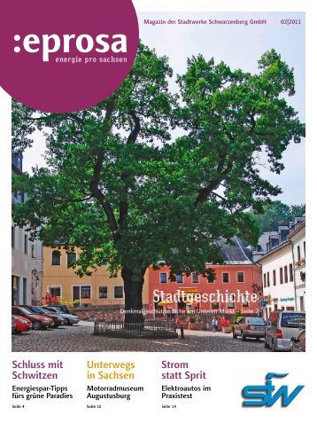 eprosa - Stadtwerke Schwarzenberg GmbH
