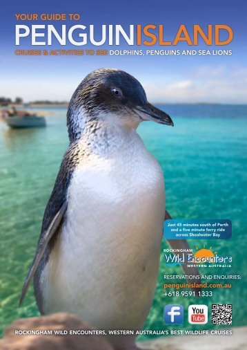 Dolphins Penguins and Rockingham Wild Encounters Brochure