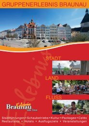 Braunau am Inn Gruppenhandbuch 2016