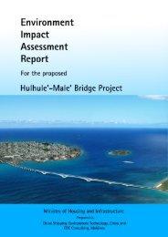 HULHULE-MALE' BRIDGE PROJECT