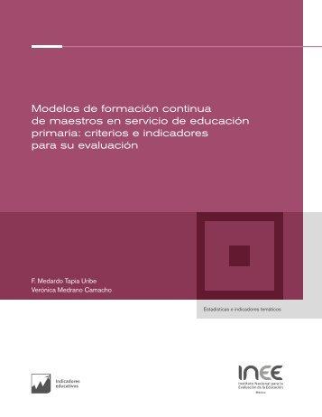 primaria criterios e indicadores para su evaluación