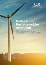 the renewables revolution