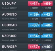 How Forex Works And Why You Should Start Trading Now?