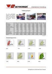 Ganzer Flyer als PDF - WS-Skyworker