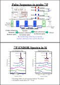 Host silicon isotope effect on 31P ENDOR - Page 4