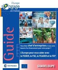 Guadeloupe_Guide_entreprises_FS_nov12_CCI