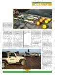 Vaquita marina - Page 5