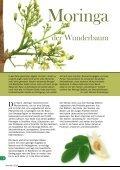 Zeitschrift Natur heilt 5 Sommer 2015 - Page 6
