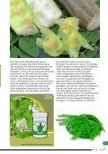 Zeitschrift Natur heilt 5 Sommer 2015 - Page 7