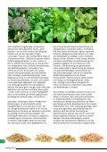 Natur heilt 4 Frühjahr 2015 - Seite 6