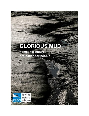 GLORIOUS MUD