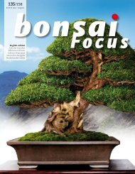 BONSAI FOCUS 2015-4 EN PREVIEW