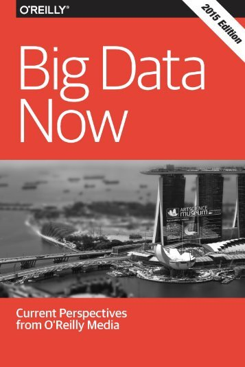 Big Data Now