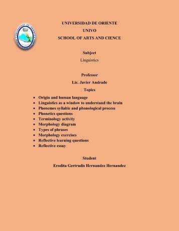 portfolio nuevooo (2)
