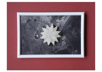 Speckstein Blume 1
