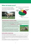 Reducing lamb losses for Better Returns - Page 4