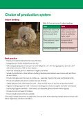 Reducing lamb losses for Better Returns - Page 6