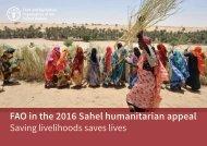 FAO in the 2016 Sahel humanitarian appeal