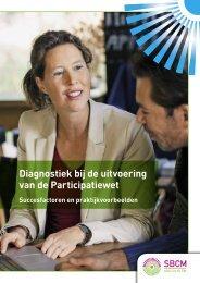 Diagnostiek bij de uitvoering van de Participatiewet