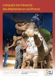 Cirques en France des éléphantes en souffrance