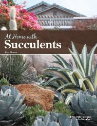 At Home with Succulents - Altman Plants