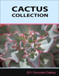 2011 Cactus Collection Catalog - CactusCollection.com