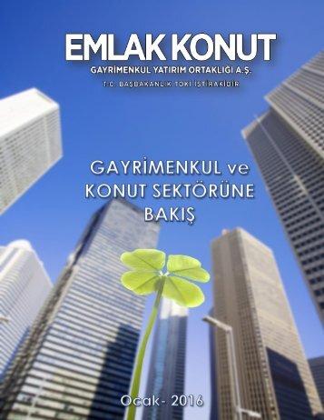 2016-Ocak-Konut-Raporu