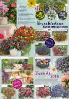 blumen-fuchsberger_2016 - Seite 3
