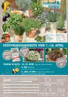 blumen-fuchsberger_2016 - Seite 4