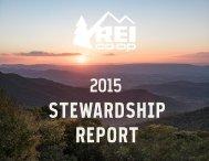 STEWARDSHIP REPORT