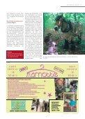 Stadtmagazin Blieskastel 01|2016 - Seite 7
